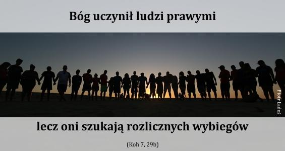 rozne-pl-04